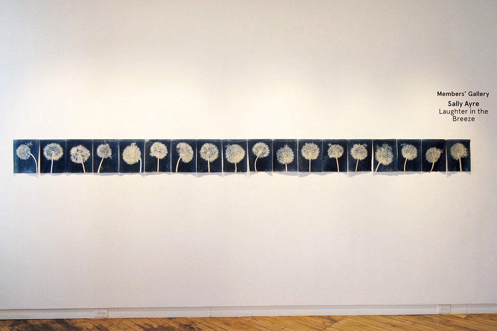 """Laughter in the Breeze #2 as installed in Gallery 44's Members Gallery March/April 2015 Cyanotype prints on Japanese Washi Paper, 167"""" wide x 12.25 high"""